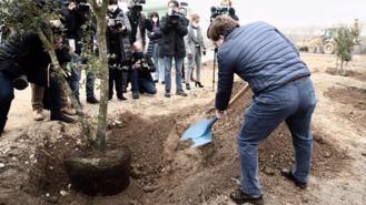 Arrancan las obras del parque de Valdebebas: 5.500 árboles serán el gran pulmón del noreste