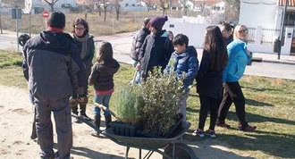 Vecinos y ecologistas: Arboles contra la Operación Campamento