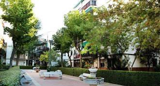 Ayuntamiento entregará árboles a comunidades de vecinos