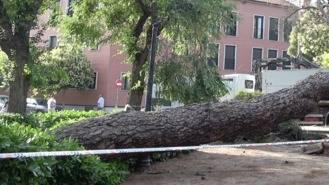 La tormenta del viernes provocó 33 incidencias y un motorista herido