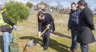 Arrancan las obras del mayor parque lineal de la localidad