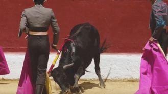 Acusan de 'excepcional crueldad' a las becerradas de Alalpardo