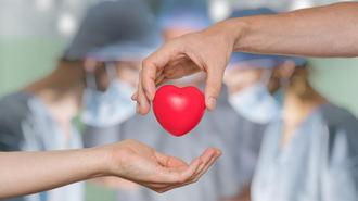 La Comunidad consigue 4,5 M en un día de donaciones en su web