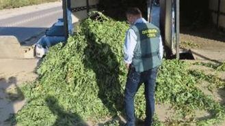 El PSOE no respaldará la tramitación de la ley de Errejón para regularizar el uso del cannabis