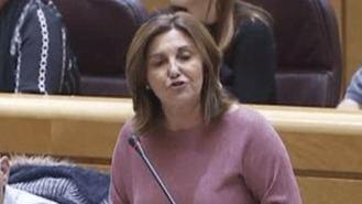 Pilar Garrido sustituye a Espinar como portavoz de Unidos Podemos en el Senado