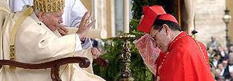 """Los 300 folios secretos que """"defienden"""" al Papa Francisco"""