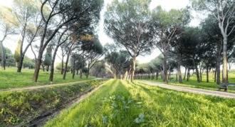 Arranca el desbroce y limpieza de vegetación para prevenir incendios