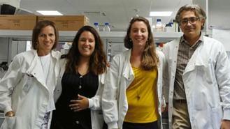 Desarrollan una nanoterapia que evita rechazo de órganos trasplantados