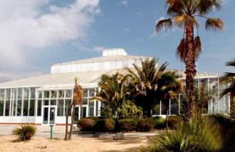 El invernadero acogerá un mercado similar al de San Antón