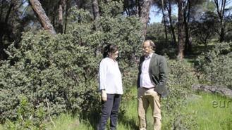 PP propone iniciar trámites para incorporar el Monte de Pozuelo al patrimonio municipal