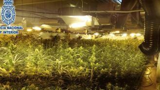 Desmanteladas 9 plantaciones de marihuana en un edificio de 12 plantas de Usera