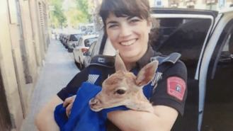 Agentes municipales recuperan 900 animales, desde un `bambi´ a caracoles gigantes
