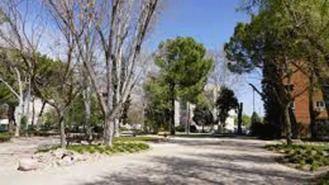 El Ayuntamiento plantará 2.611 árboles y 6.764 arbustos tras los daños de Filomena