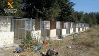 2 detenidos por la muerte y maltrato a perros en una residencia canina