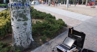 Evaluan con `tomógrafos´ la salud de los árboles del casco urbano