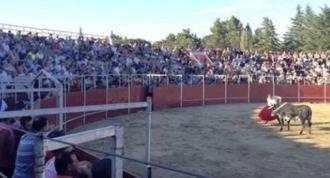 Colmenarejo vota No a financiar los toros con dinero público