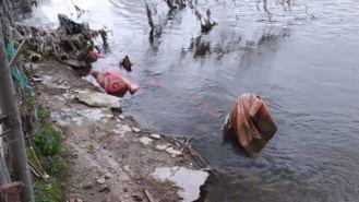 Alertan de 4 vertidos de aguas residuales sin tratar al río a su paso por la localidad