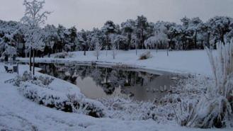 Activado el Plan de Inclemencias Invernales ante intensas heladas y nieve