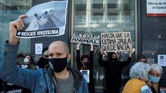 Manifestación el 29 M para exigir el rescate de los animales de Vivotecnia